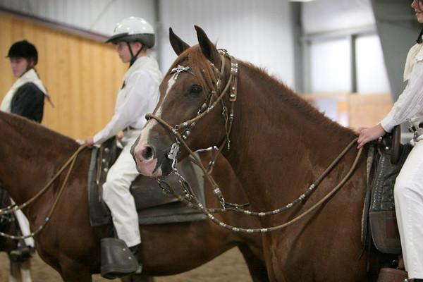 Class 25, Junior Equitation