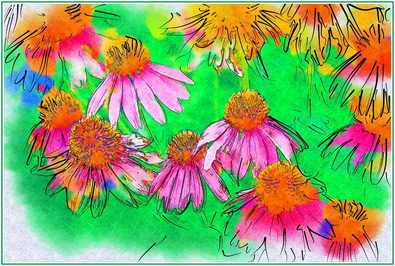 Cone Flowers Drawing.jpg