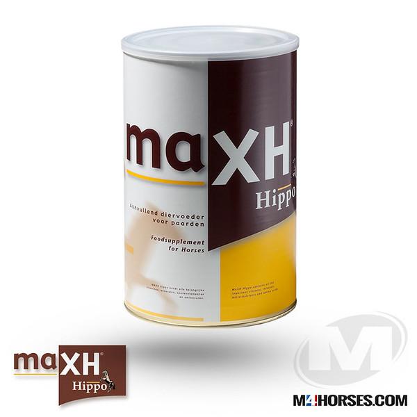 M4MAXH-Hippo-2.jpg
