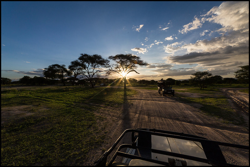 Sunset, Tarangire NP