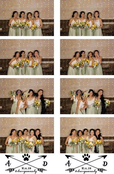 Amanda & David's Wedding- 10.6.18 - Photo Strips