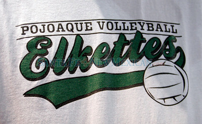 State Volleyball Championships
