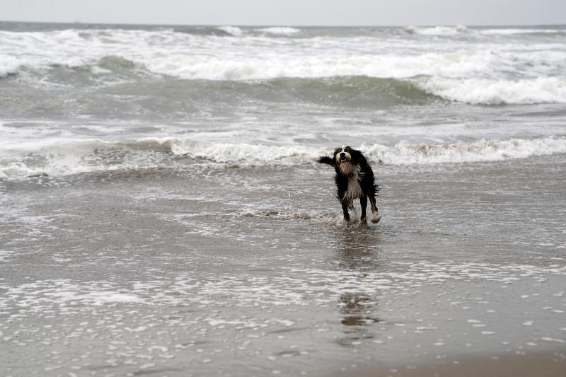 ocean beach quarantine 1226295-30-20.jpg
