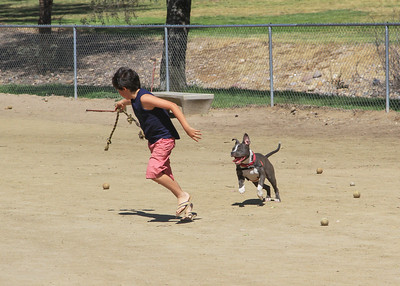 Miguel, son & pup.