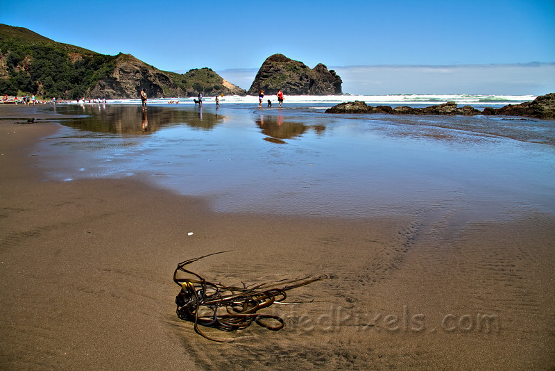 Camel Rock, Piha beach