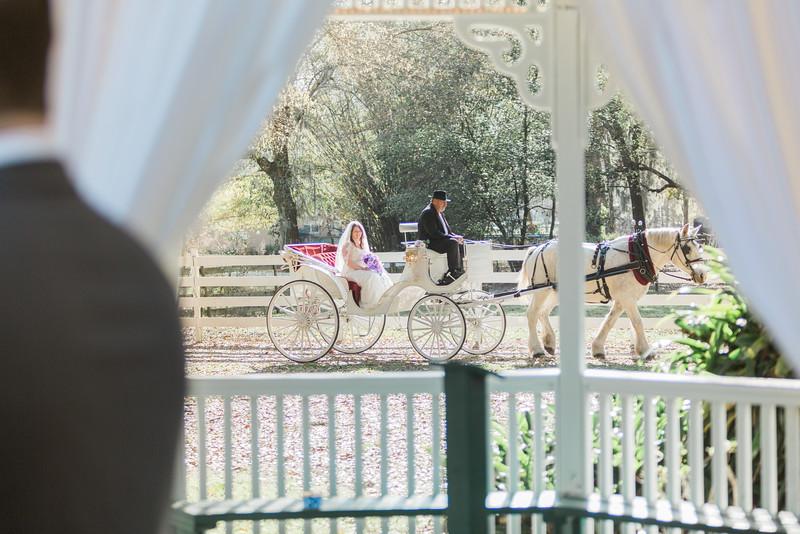 ELP0312 DeRoxtro Oak-K Farm Lakeland wedding-1013.jpg