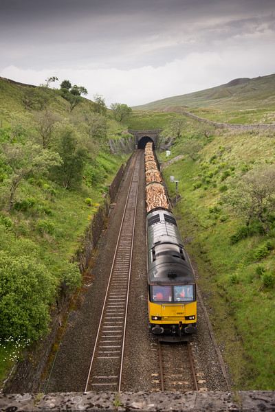 Timber freight train exiting tunnel on remote moor