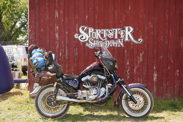 Sportster Showdown