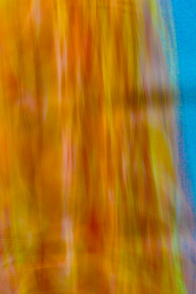 Vivid bstract colors and patterns of glass and flowers cause confusion and calming moods