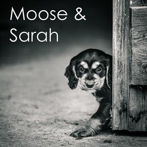 Moose & Sarah