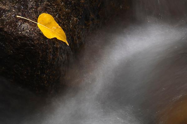 Mono Lake/Bodie