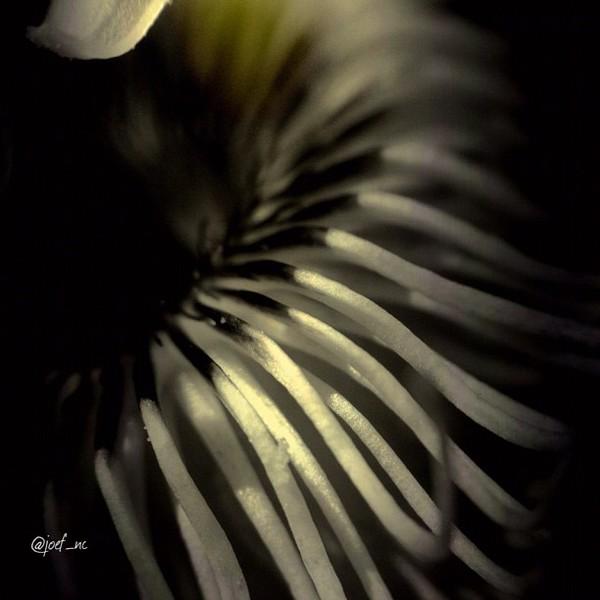 2012-07-10_1341883369.jpg