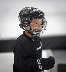 Wild Hockey Sept 2018