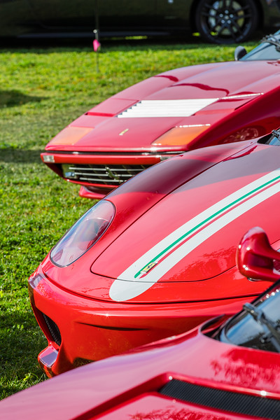 2_11_17 Concours in the Hills-47.jpg