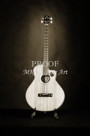 Harris Acoustic Bass Guitar in Fine Art Black and White