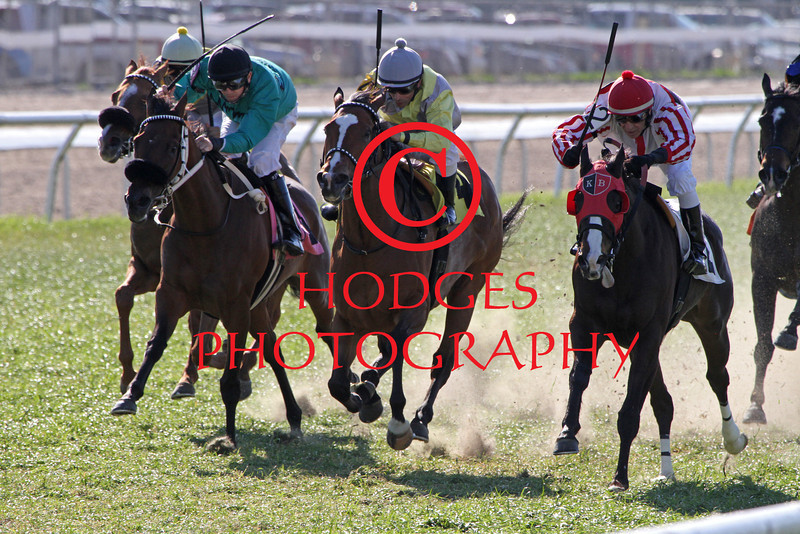 3/16/2013  -  Jockey Richard Eramia aboard Extravaganza (third from left) outduels Storm's Promise ridden by Kerwin Clark (right, red cap) and Brian Hernandez, Jr. aboard Monono (second from left) to win the 27th running of the Happy Ticket Stakes at Fair Grounds.  Hodges Photography / Lynn Roberts
