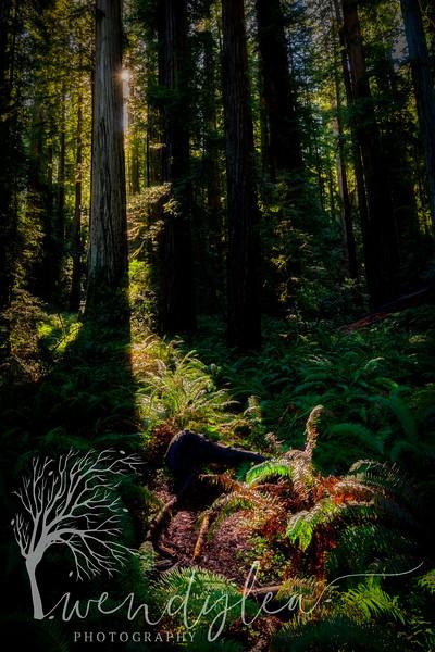 wlc Oregon Coast 032019 5402019-Edit.jpg