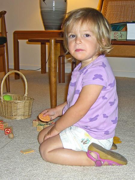 imitation plastic cracker. do not eat. 037