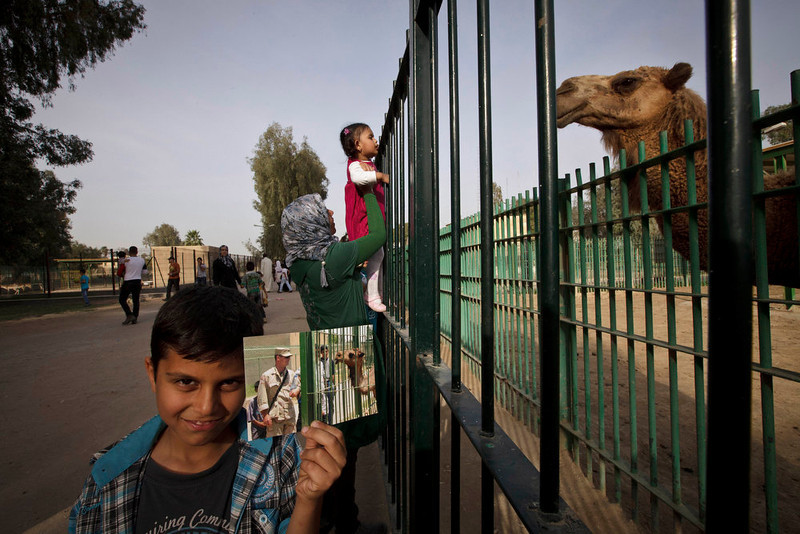 . A woman and her child look at a camel at the Baghdad Zoo, as Abdullah, 8, poses with a photograph taken by Niko Price of the Associated Press on July 20, 2003 at the same site showing a U.S. soldier visiting the newly-opened zoo. The zoo was decimated during the 2003 U.S.-led invasion, when the staff fled and looters gutted the zoo and the park surrounding it. Only a handful of animals survived, and later the grounds were used as a holding facility for looters detained by U.S. soldiers. The zoo reopened in July 2003, after being rehabilitated under the care of U.S. Army Capt. William Sumner and a South African conservationist Lawrence Anthony. Today, it houses over 1,000 animals and is a popular destination for families. Photo taken on March 15, 2013. (AP Photo/Maya Alleruzzo)