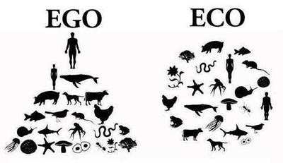 EGO V ECO.JPG