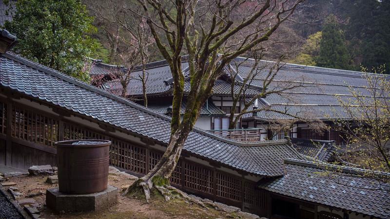 Eiheiji Temple 10041312 .jpg