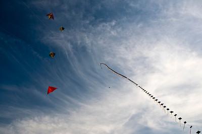 Delhi Kite Festival