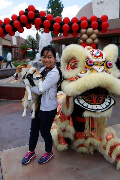 Cerritos Towne Center - Lunar New Year - Feb 9, 2019