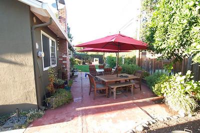 Backyard Progress