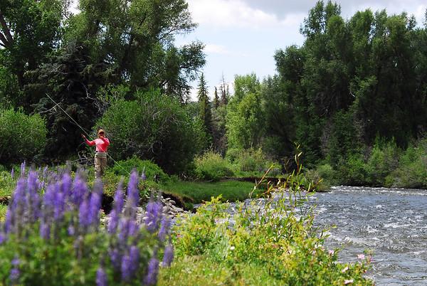 FFM Gunnison River Project