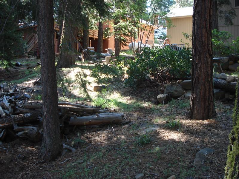 06-06-2015 First Watering Backyard Project (12).JPG