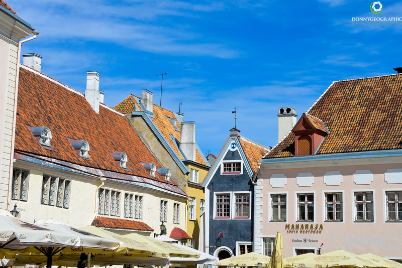 roof tops in the square.jpg