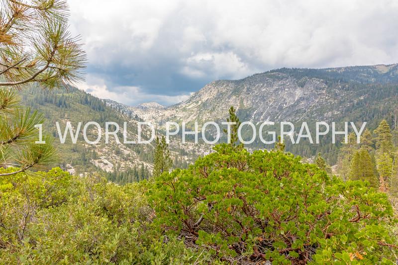 San Fran_Lake Tahoe Trip 2017-1634-99.jpg