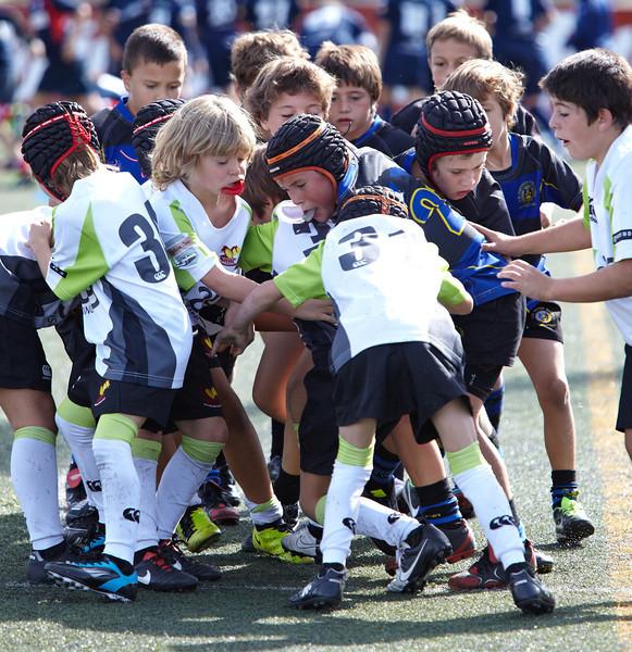0095_12-Oct-13_TorneoPozuelo.jpg