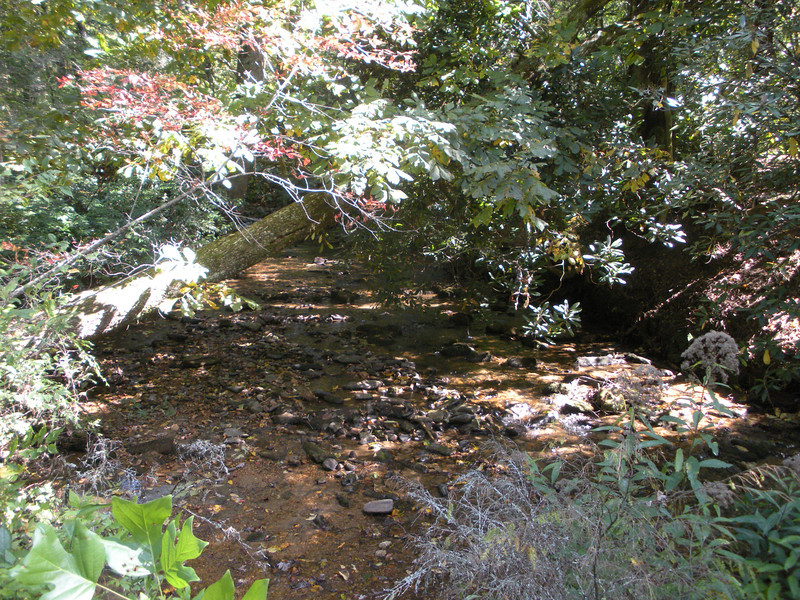 Burrell's Ford Campground