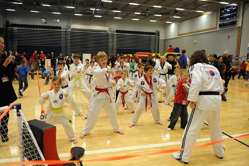 The Tae Kwon Do galleries have moved to my Flickr site. Click the link to go there directly.   http://www.flickr.com/photos/davidcar/collections/