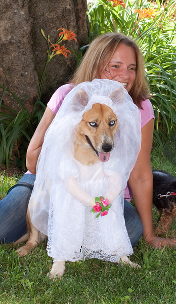 Sharky Bride