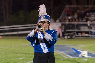 State-Playoff-Marching-Nov-08-2013