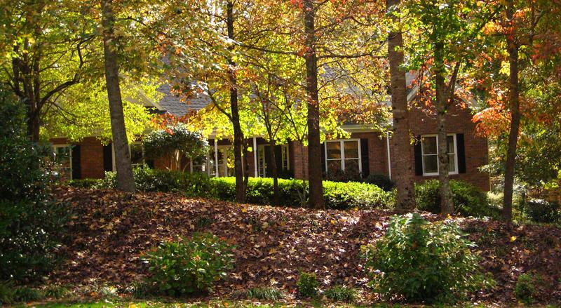 Crabapple Forest Milton Georgia Community (5).JPG