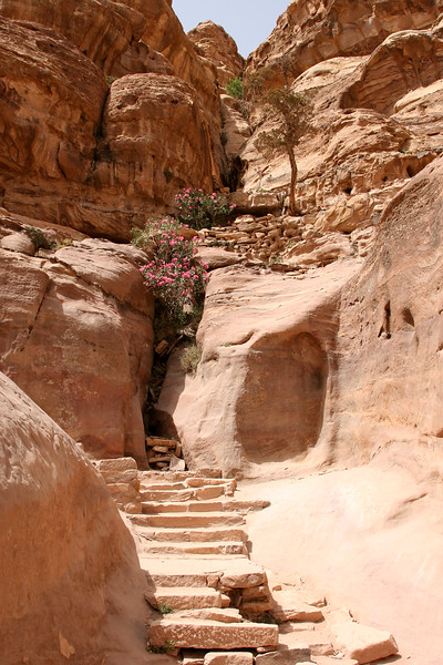 Petra - The ancient pathway and steps up to the Monastery.