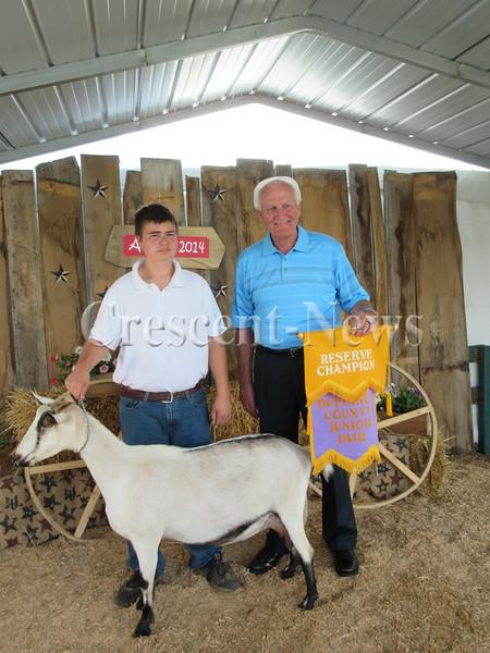 08-22-14 NEWS livestock sale