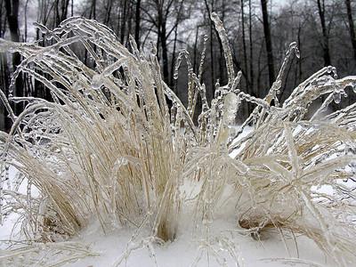 Ice Storm - February 13, 2007