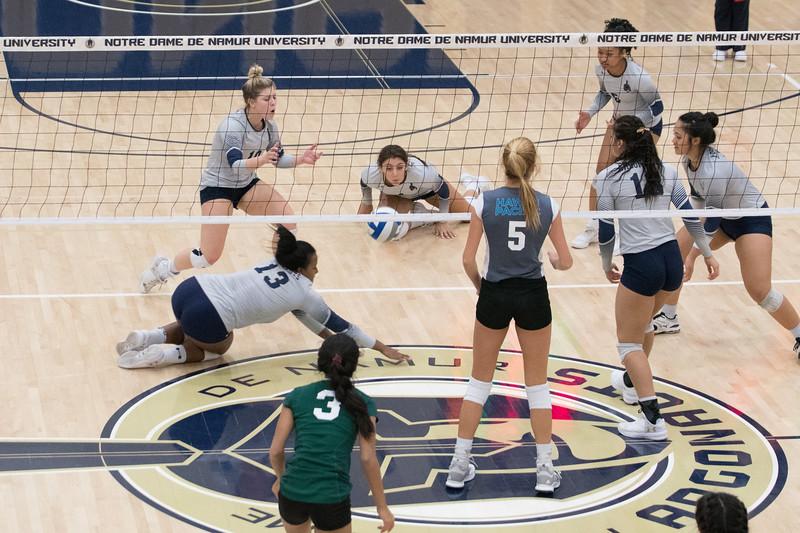HPU Volleyball-93018.jpg