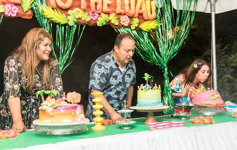 Aloha Birthday Party Cesar LumoBox-155.jpg