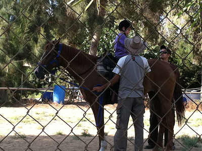 Israel Horse lesson!!!! and with animals!!!! so much fun!!!!!