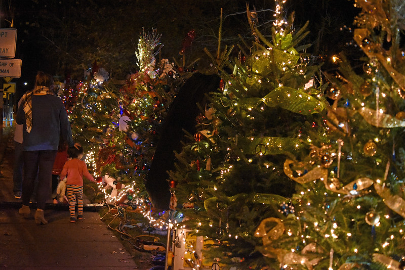 A family takes a stroll alongside the trees in the Rotary Club of Davidson's Giving Village. This wonderful fundraiser for local nonprofit organizations in a favorite attraction for young and old visitors alike.