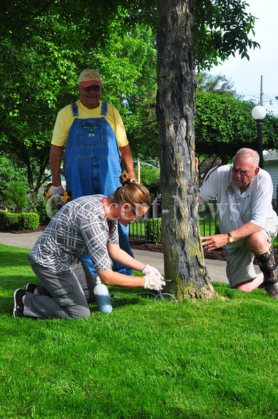 05-26-16 NEWS Ash Tree Injections