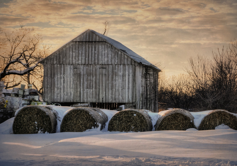 snow 2016 - bales and barn(p).jpg