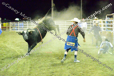 Lincoln County Fair 2014