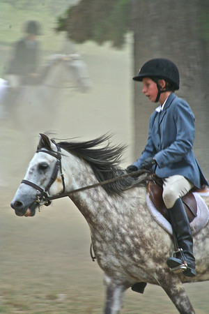 Strawderman Horseshow and Horses
