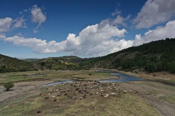 Drone - Lago Bau Muggeris - Bovini - Cavalli - Maiale - Nuraghe Ruinas - Perda Liana - Tomba dei giganti Pedru su Chiai - 19.08.2020